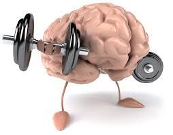 Brain Soul Leap Bootcamp